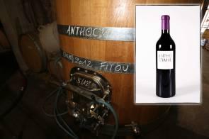 Cuve d'Anthocyane vin rouge du Mas des Caprices, inphographie pour la page du site web. Campagne photographique réalisé par Serge Briez en 2013 pour Cap Médiations