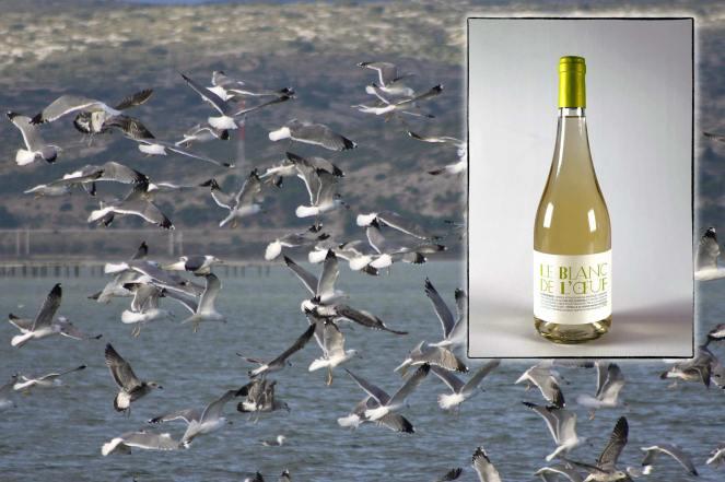 Infographie pour la page de présentation du Blanc de l'Oeuf, vin blanc du Mas des Caprices, par Serge Briez pour Cap Médiations 2012