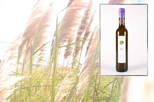Infographie pour la page de présentation de l'huile d'olive du Mas des Caprices, par Serge Briez pour Cap Médiations 2012