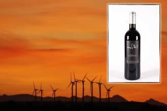 Infographie pour la page de présentation du vin rouge Oufti du Mas des Caprices, par Serge Briez pour Cap Médiations 2012