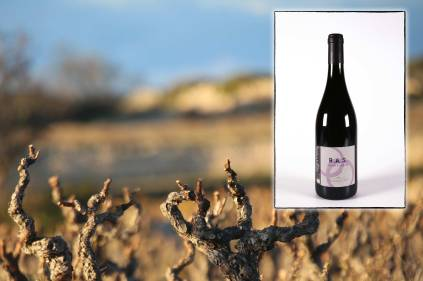 Infographie pour la page de présentation du vin rouge RAS du Mas des Caprices, par Serge Briez pour Cap Médiations 2012